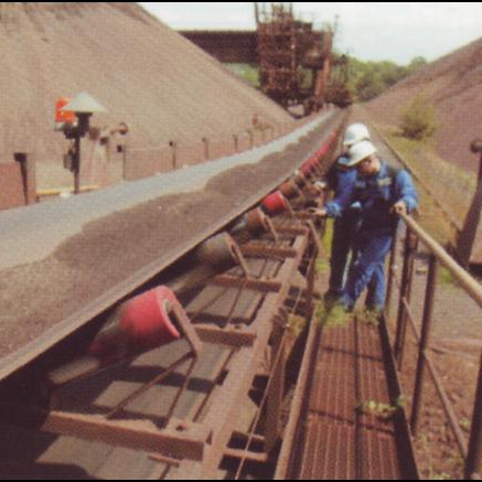 Conveyor Inspection
